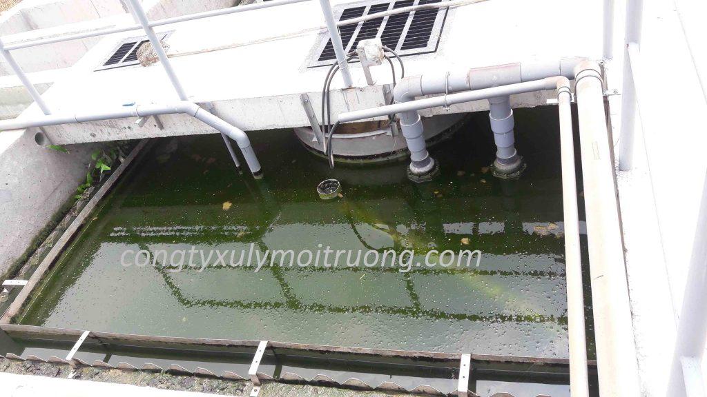 xử lý nước thải sinh hoạt - MBBR